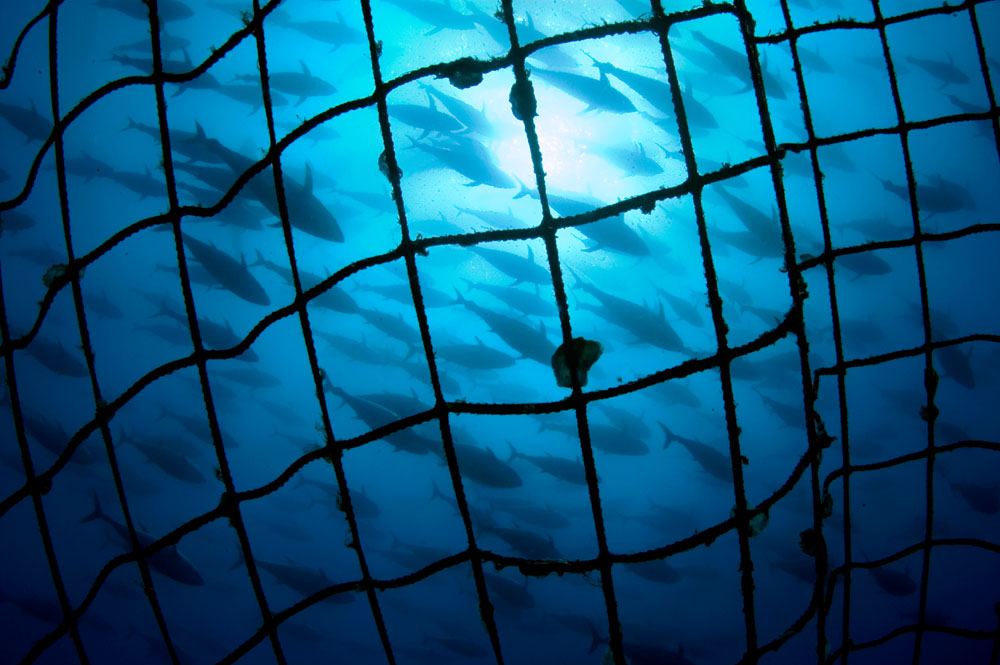 Tuna Cage, Turkey.