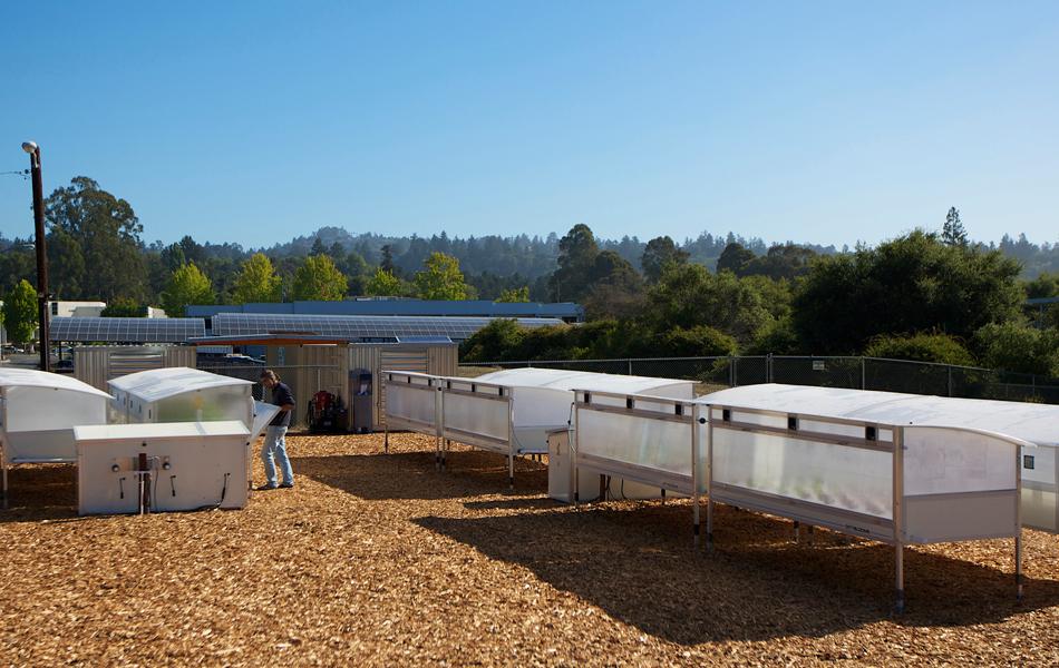 Growbot : floraison de la ferme urbaine 2.0