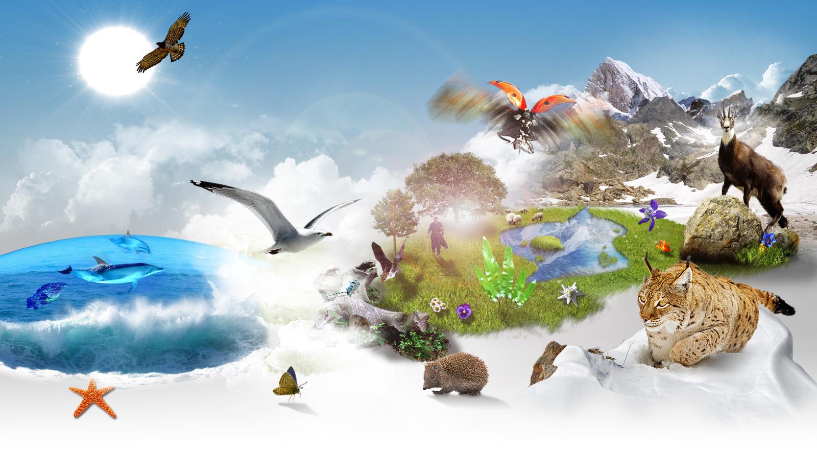 Biodiversité : enjeu environnemental ou politique ?