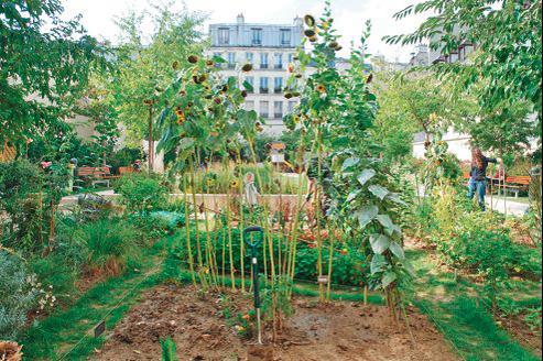 Villes vertes : quand végétal rime avec digital