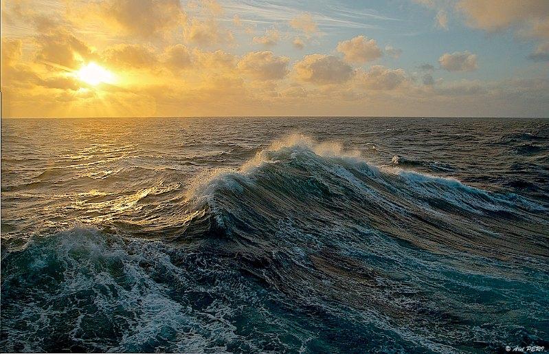 La «COP21 de la haute mer» s'ouvre aujourd'hui