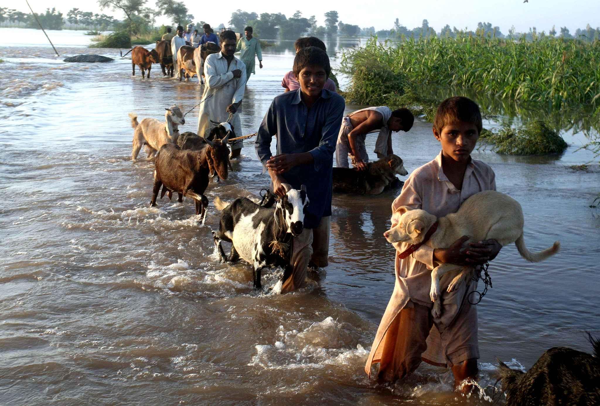 Mieux prévoir la mousson en Inde