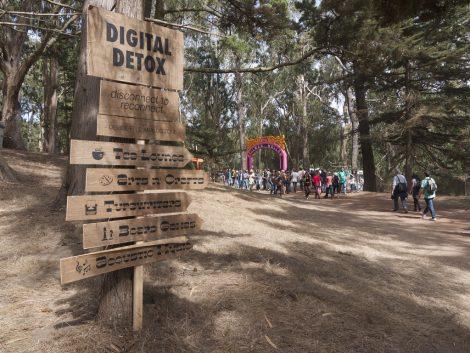 Digital detox : déconnectez-moi !