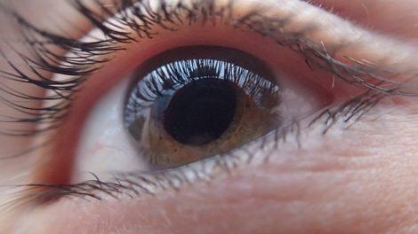Un film hydrogel redonne la vue!