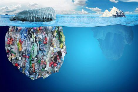 déchets plastique poissons et crustacés