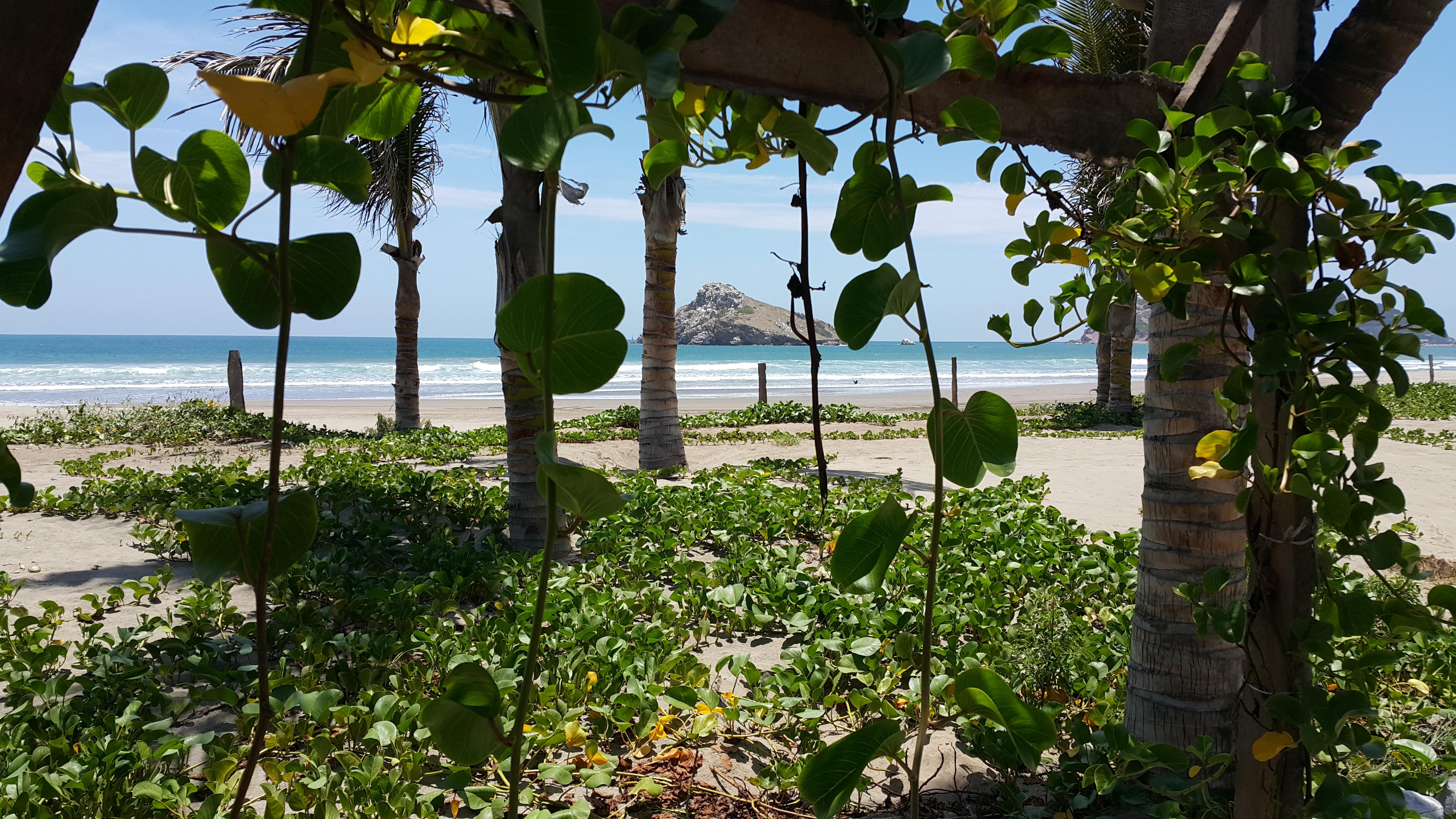 plage d'Amaitlan, station balnéaire mexicaine