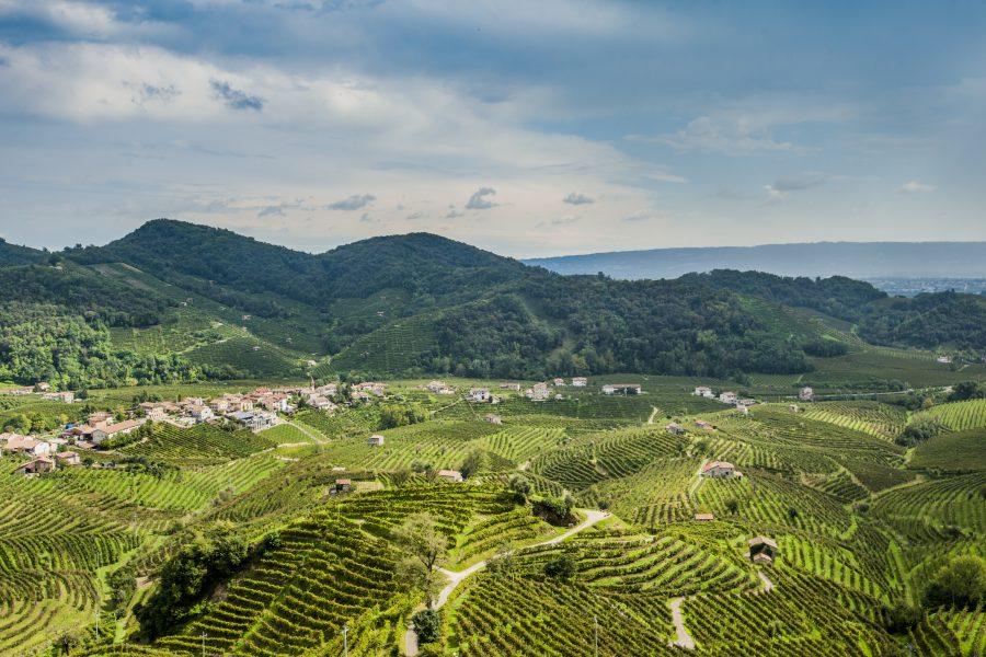 Vignobles de prosecco de Valdobbiadene