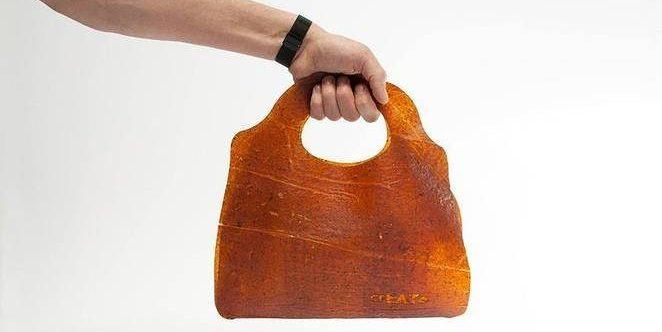Fruitleather : un cuir fruité !