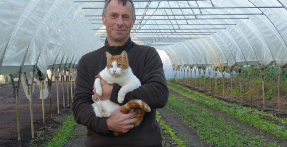 Des chats pour protéger l'agriculture bio