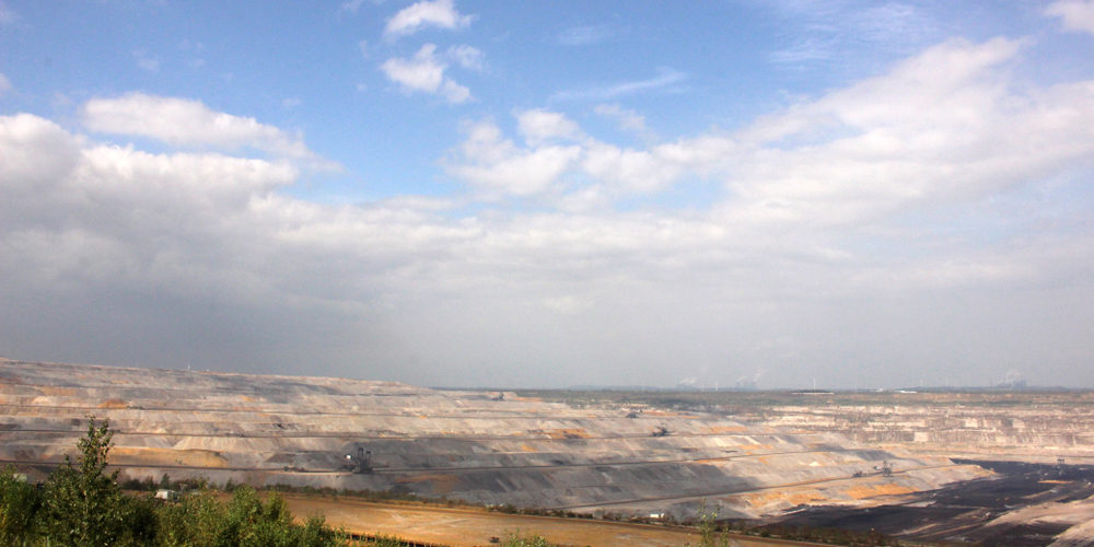 Ecosia veut acheter une forêt pour la sauver des mines à charbon