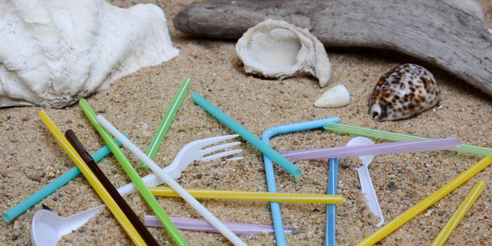 Le plastique à usage unique bientôt interdit dans l'UE ?