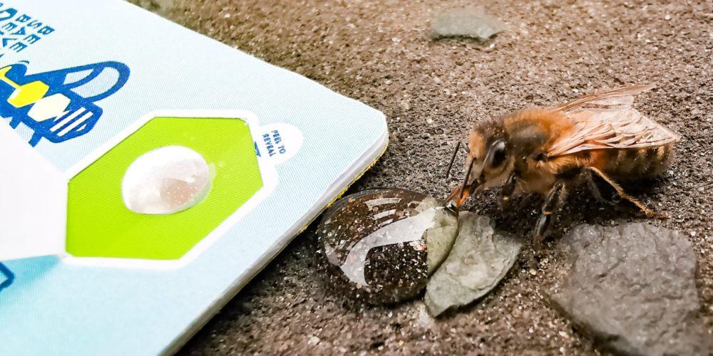 Nourrissez des abeilles grâce à une carte de crédit