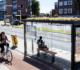 Utrecht : faire fleurir les abribus pour sauver les abeilles