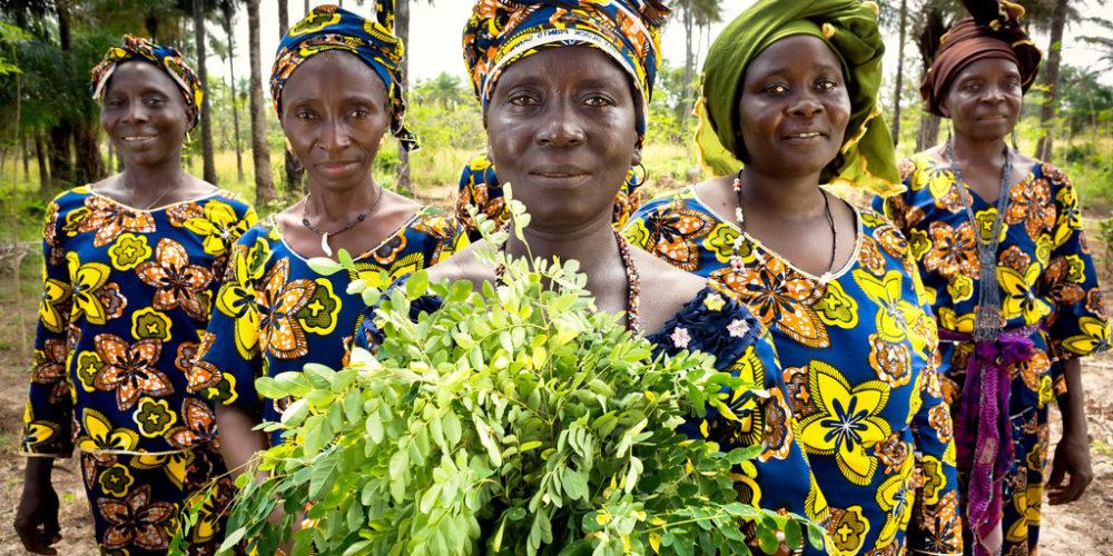 Climat : Les femmes rurales sont une « force puissante » pour l'action climatique, selon l'ONU
