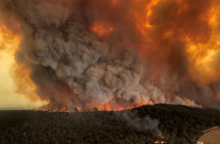 Australie : l'ampleur du désastre (infographie)