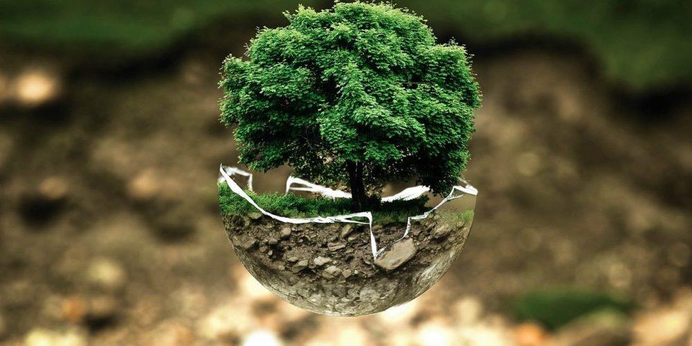 Et si vous pouviez entrevoir l'impact de la transition écologique sur votre secteur ?